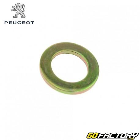 Peugeot Kisbee und Streetzone Säulenscheibe