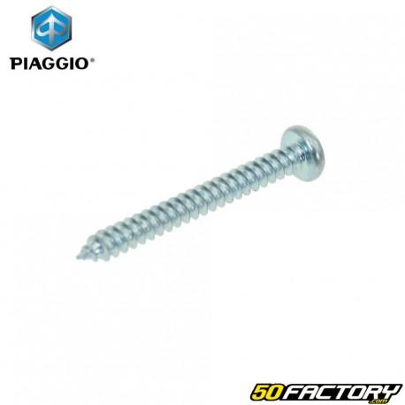 Tornillo intermitente Piaggio ZIP desde 2000