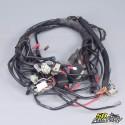 Elektrischer Kabelbaum Malaguti Drakon 50 Nkd