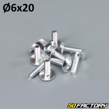 Pack 10 vis 6x20mm tuning gris argent