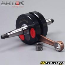 Vilebrequin AM6 Artek K1 montage roulements 6204