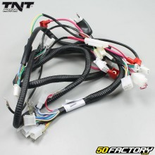 TNT Roma 2T electrics wiring loom Clic Wiring Harness on dog harness, amp bypass harness, pet harness, safety harness, nakamichi harness, maxi-seal harness, pony harness, cable harness, radio harness, alpine stereo harness, engine harness, oxygen sensor extension harness, fall protection harness, obd0 to obd1 conversion harness, electrical harness, suspension harness, battery harness,