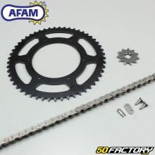 Chain Kit Afam 11x53x132 Aprilia RS4  et  Derbi GPR (Since 2011)