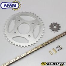 Chain Kit Afam 11x43x110 Kymco KPW  50