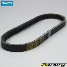 Correia Kymco G Dink,  Bet and Win,  Yup 24x914mm 250 4T Dayco