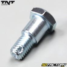 Schraube der hinteren Trommelstützplatte TNT Motor City,  Skyteam Dax 50 4T
