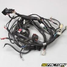 Wiring harness Aprilia RS4  50