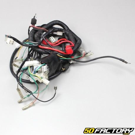 Eurocka electrical harness Raven