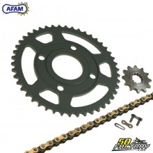 Chain Kit Afam 11x47x132 Yamaha TZR and Mbk Xpower