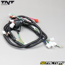 TNT electrical harness Roma 4T V2