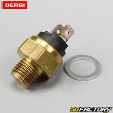 Temperature sensor Derbi Euro 2 and radiator