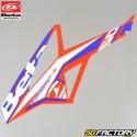 Kit de decoración original Beta  RR  Racing factory desde 2011