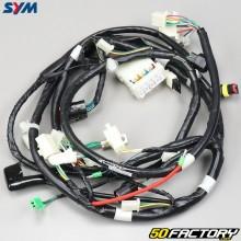 Arnés eléctrico Sym Orbit 3 50 4T