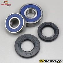 Honda Rear Wheel Bearings and Seals XLR,  XR 125 All Balls