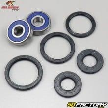 Front Wheel Bearings and Seals Honda  Shadow 125 All Balls