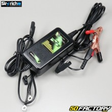 Battery charger and lithium charge maintenance Skyrich