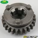 Nebenwellenritzel des Getriebes AM6 Minarelli (V1) Top Performances