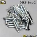 Kit di montaggio del motore Derbi euro 2