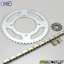 Verstärkter Kettensatz 11x51x132 Beta RR 50 (von 2011) Afam  or