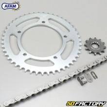 Kit chaîne 12x47x124 Aprilia RS, Tuono 50 Afam gris