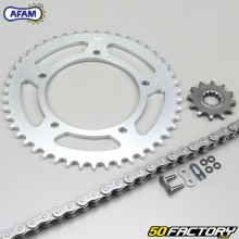Reinforced O-ring chain kit 12x47x124 Aprilia RS Tuono  50  Afam gray