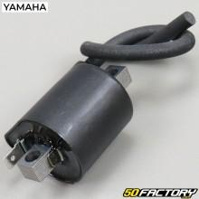 Bobina de encendido original Yamaha DTRE, DTX 125 (2004 a 2007)