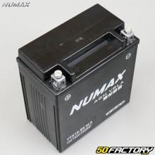 Batterie Numax YTX16-BS SLA 12V 14Ah acide sans entretien Peugeot Metropolis, Piaggio…