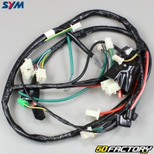 Cablaggio originale Sym Orbit 50 4 (2007 - 2014)