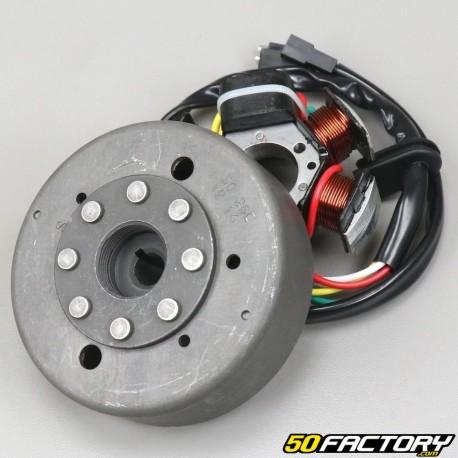 Ignição AM6 Minarelli com chute tipo Ducati Energia