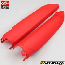 Protectores de horquilla Beta RR 50 Racing  et  Track (de 2018) rojo