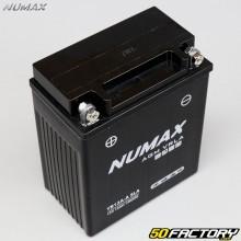 Numax-Batterie YB12A-A AGM Wartungsfreie Säure Peugeot Vivacity,  Geopolis...