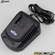 Cargador de batería rápido Ribimex R-BAT 20